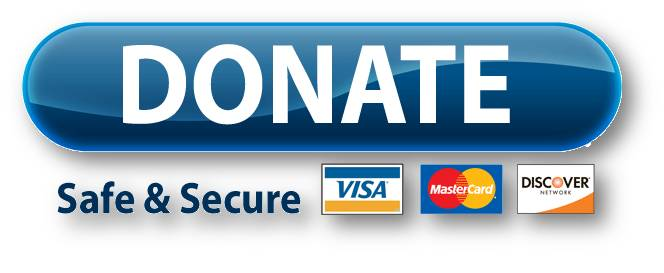 Donate Now Button - Opt 1